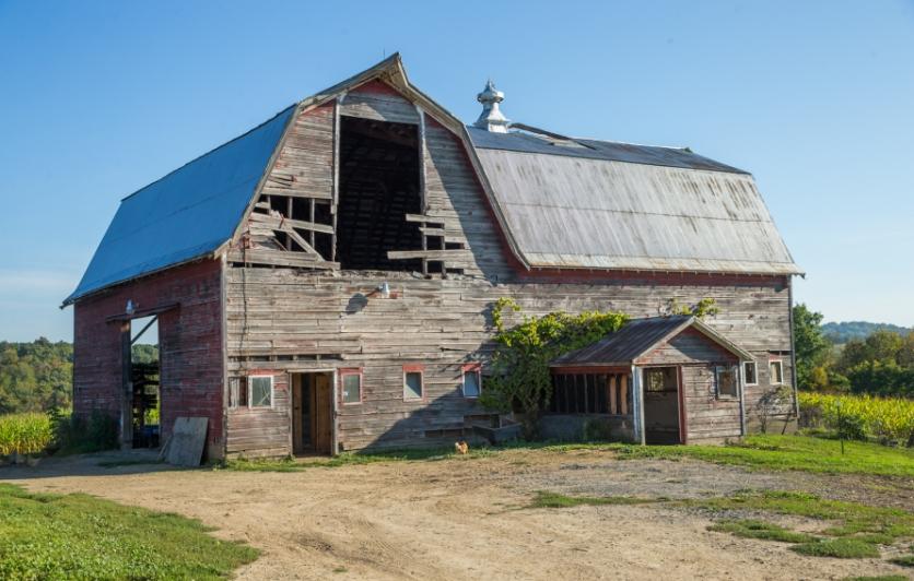 Gorsky Farm