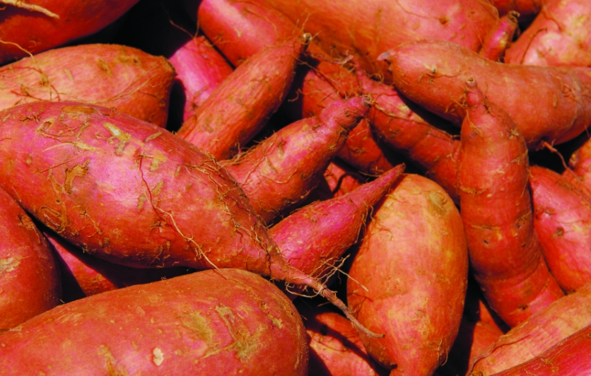 I can't imagine living without sweet potatoes. They provide the enjoyment of sweetness without the headache or the health complications.