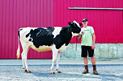 Rich milk from the King Brothers dairy herd shows up in glass bottles delivered to customers in the Saratoga region.