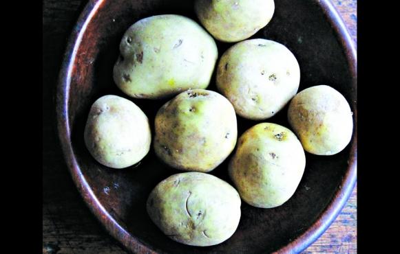 This recipe for Gnochhi Di Patate Di Arcangelo Dandini (Arcangelo Dandini's Potato Gnocchi)is very forgiving.